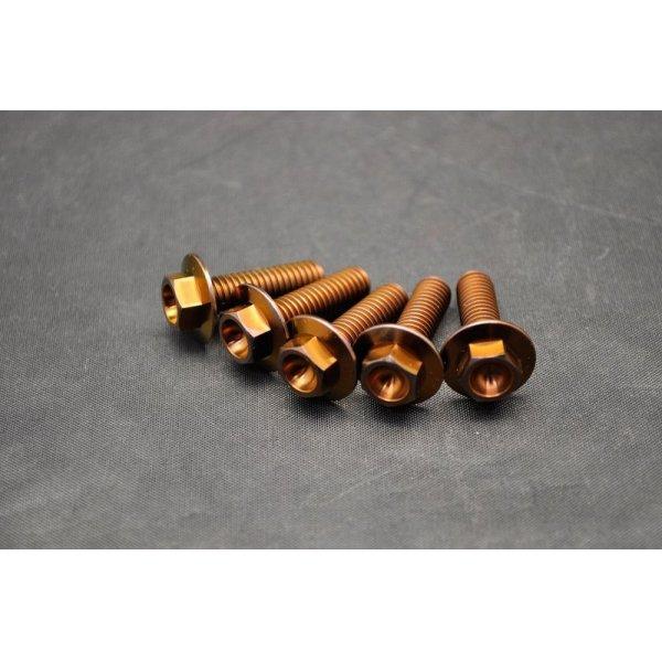 画像1: β-Titanium製 クラッチスプリングチタンボルト【 5本1セット 】