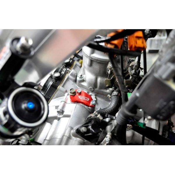 画像4: オイルポンプ ブランク プレート[RED] MC21/MC28 全年式用
