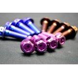 β-Titanium製 ノーマルキャリパー用 ボルト【 4本1セット 】 MC18 / MC21 / MC28
