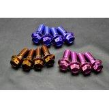 β-Titanium製 ブレンボキャリパー用 ボルト【 4本1セット 】 MC18 / MC21 / MC28